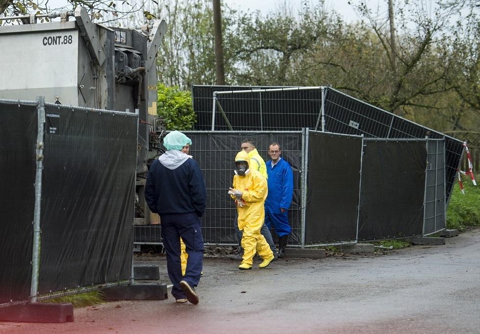 التشيك تعلن تفشي فيروس إنفلونزا الطيور في مزرعة دواجن