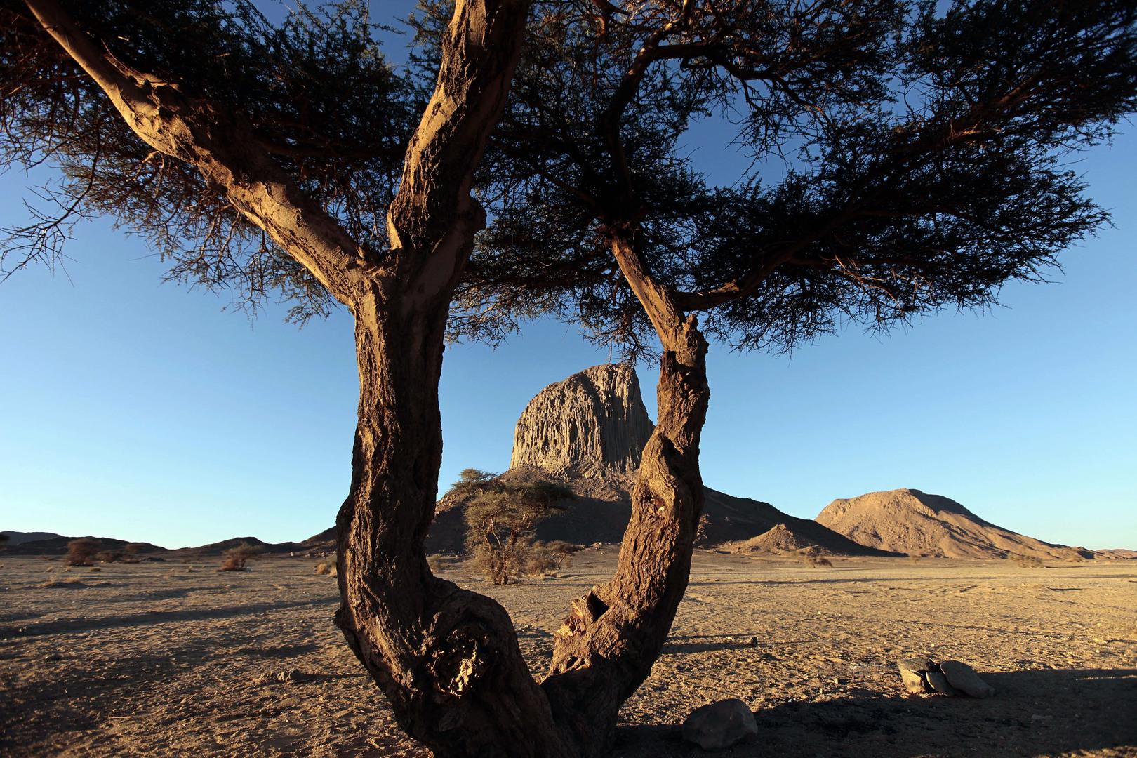 تمنراست في أقصى جنوب الجزائر قاحلة في سطحها عالية الخصوبة في جوفها.