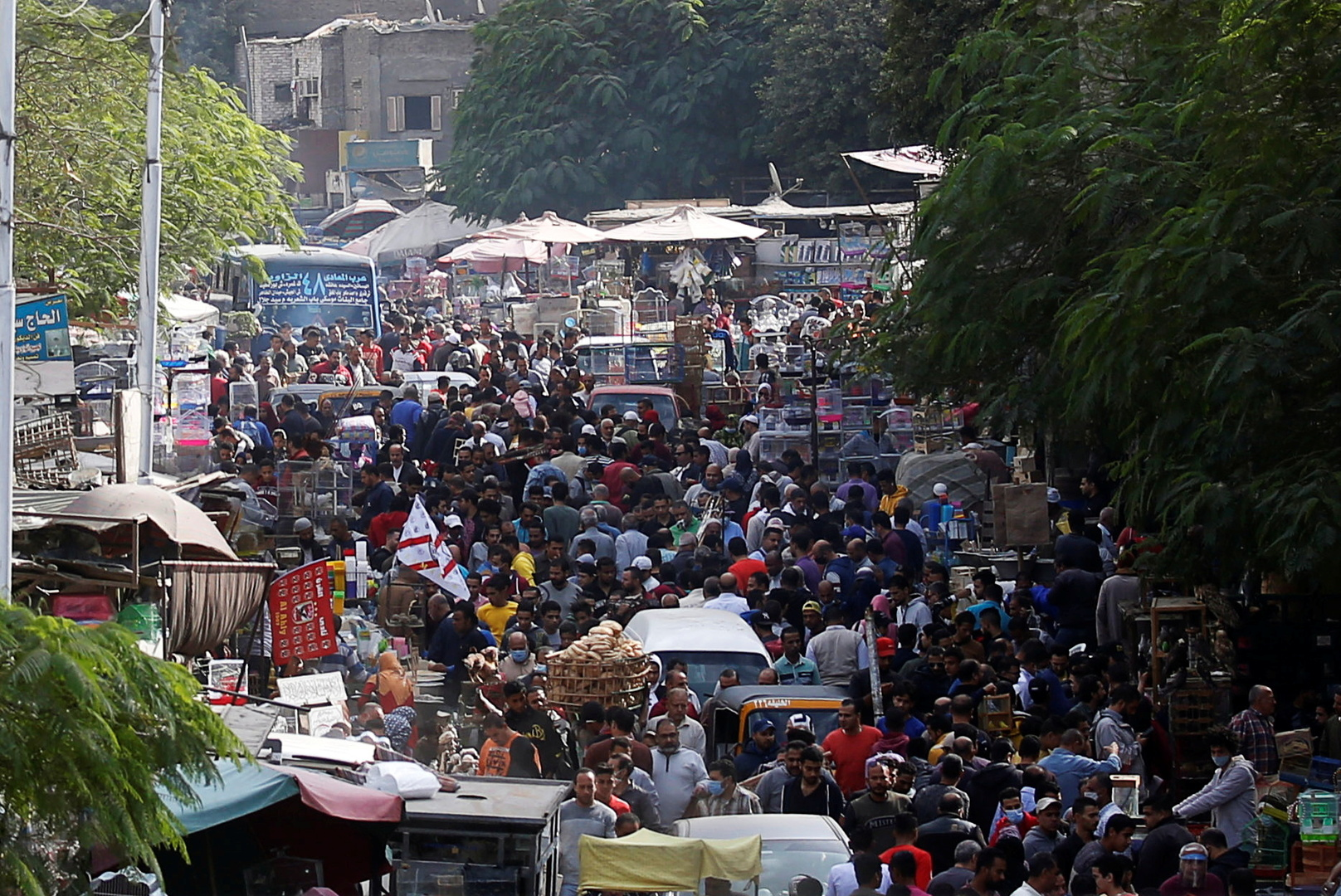 Egypt announces the rate of population increase in the country