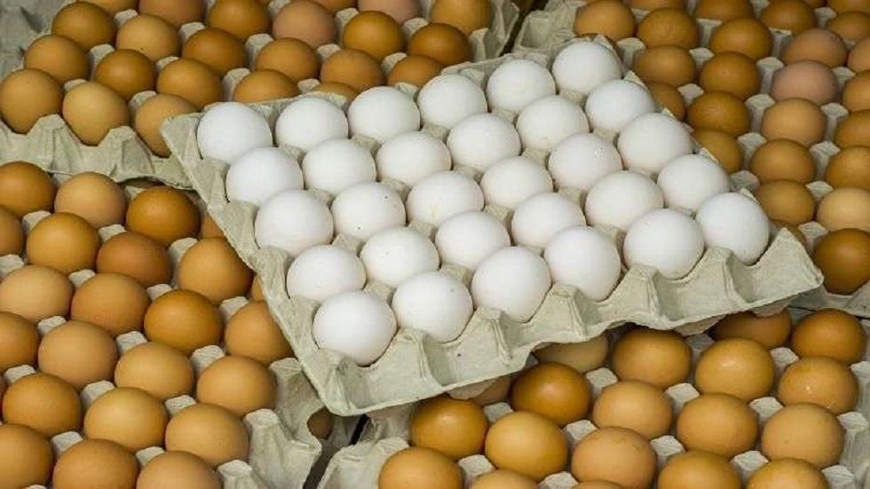 كيف نختار بيض الطعام؟