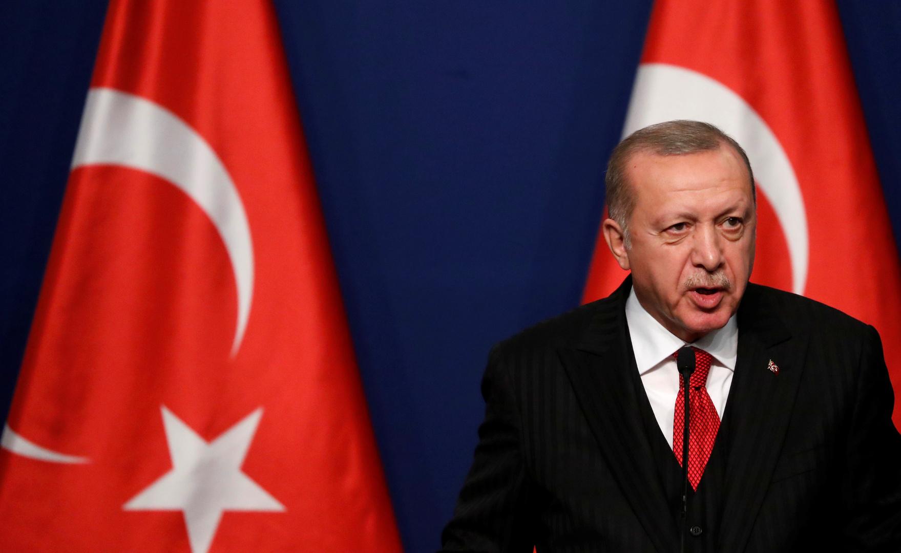 أردوغان: خطة عمل حقوق الإنسان في تركيا ستطبق في غضون عامين