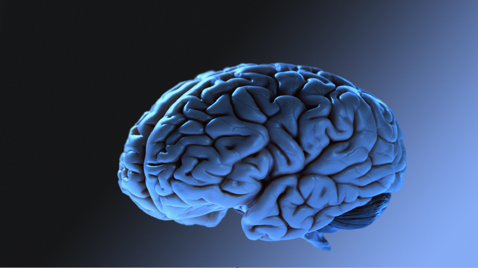 اضطراب دماغي غامض يسبب فقدان الذاكرة والهلوسة يحيّر الأطباء الكنديين