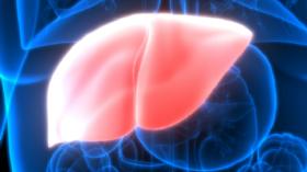 أعراض مرض الكبد الدهني: 6 علامات شائعة لتليّف الكبد!