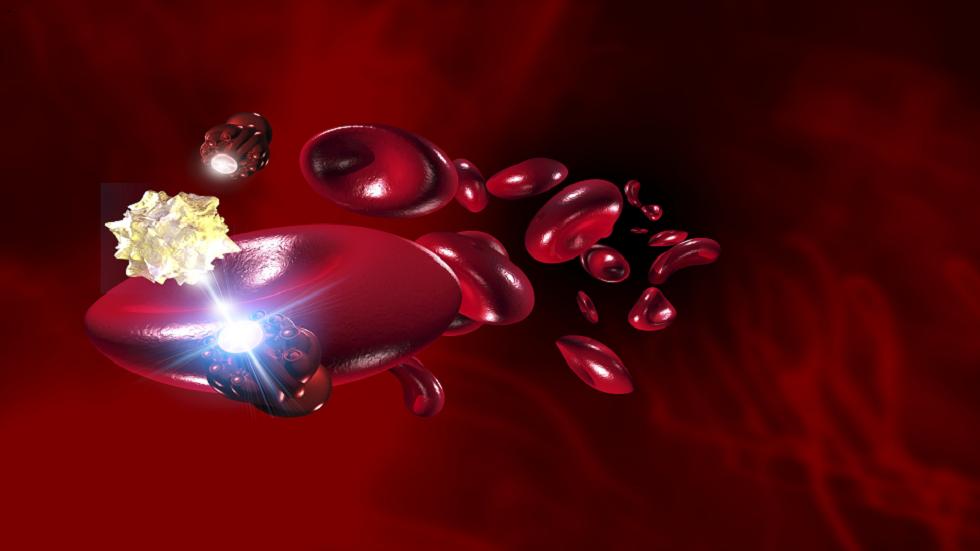 ابتكار روبوتات بيولوجية من خلايا الضفادع قادرة على تذكر محيطها والشفاء الذاتي!