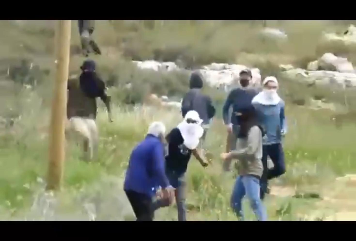 شاهد.. مستوطنون يهاجمون مسنا فلسطينيا بالحجارة والعصي