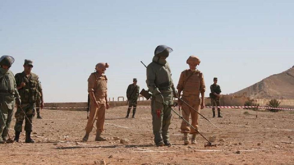 عمليات إزالة الألغام في سوريا - أرشيف