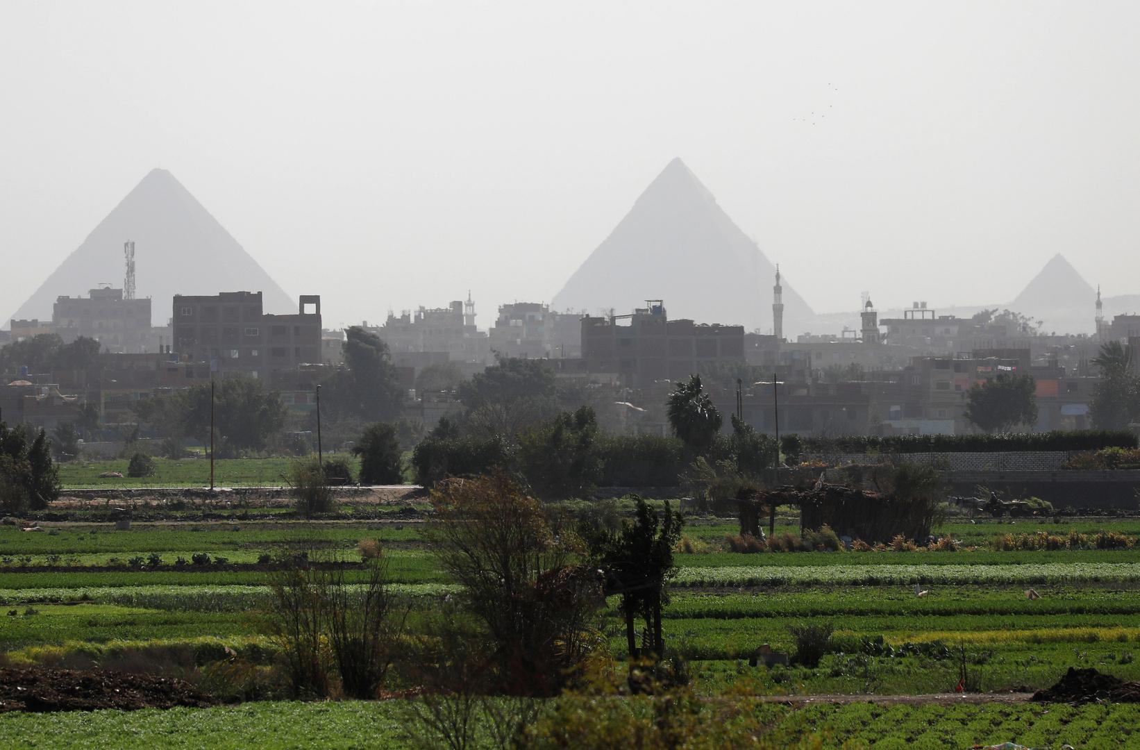 مصر تعلن ارتفاع صادراتها الزراعية