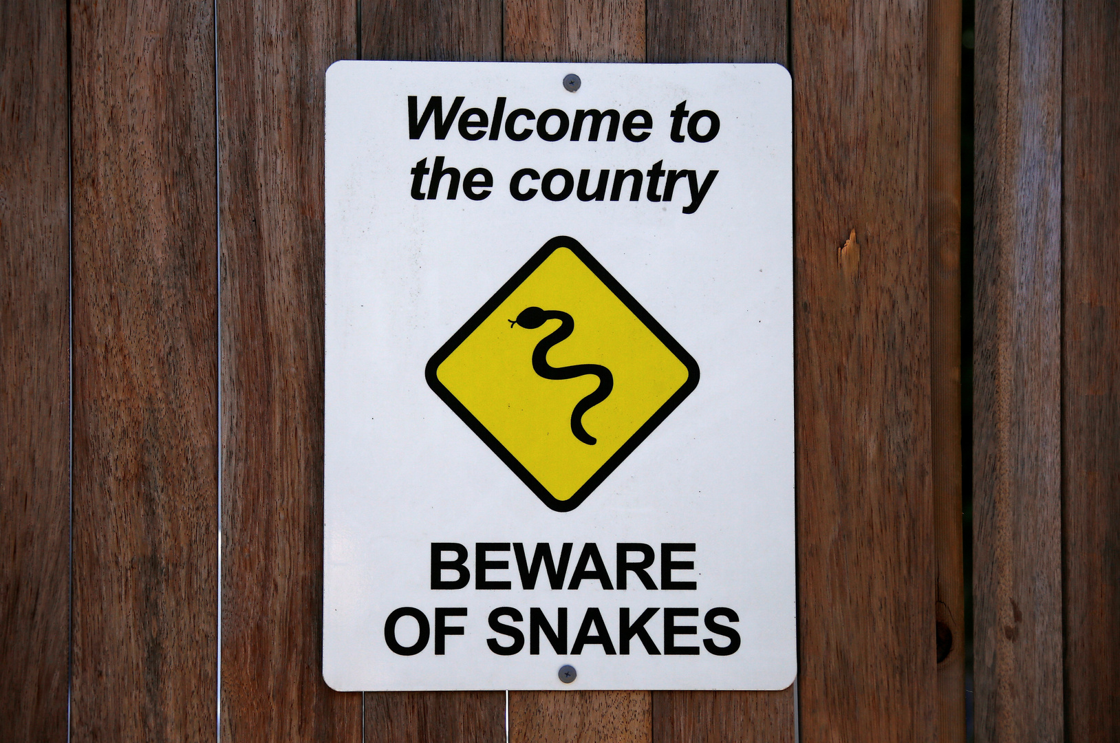 تحذير من الأفاعي في أستراليا