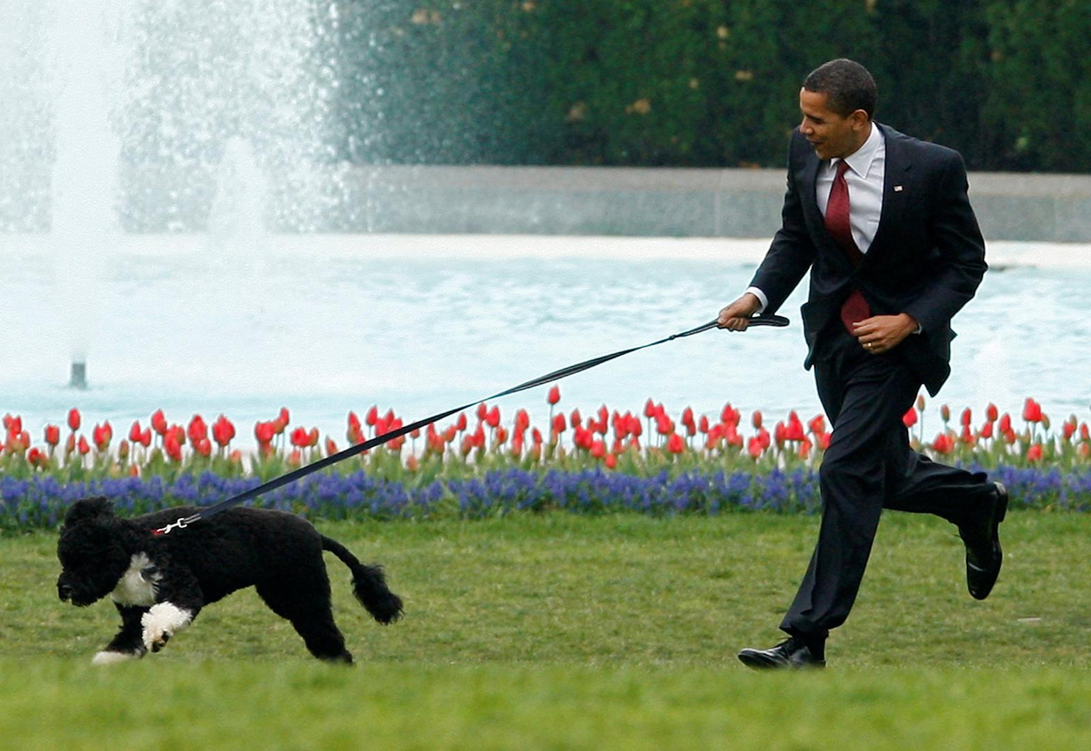 الرئيس الأمريكي الأسبق باراك أوباما وكلبه