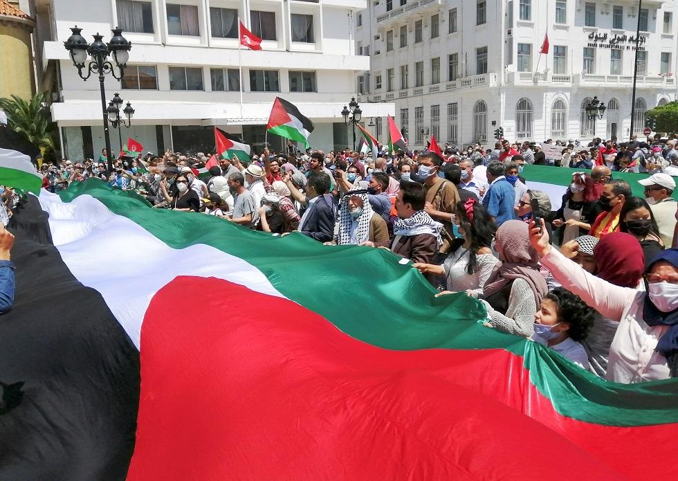 تونس.. وقفة تضامنية مع فلسطين تتحول إلى مسيرة حاشدة (فيديو)