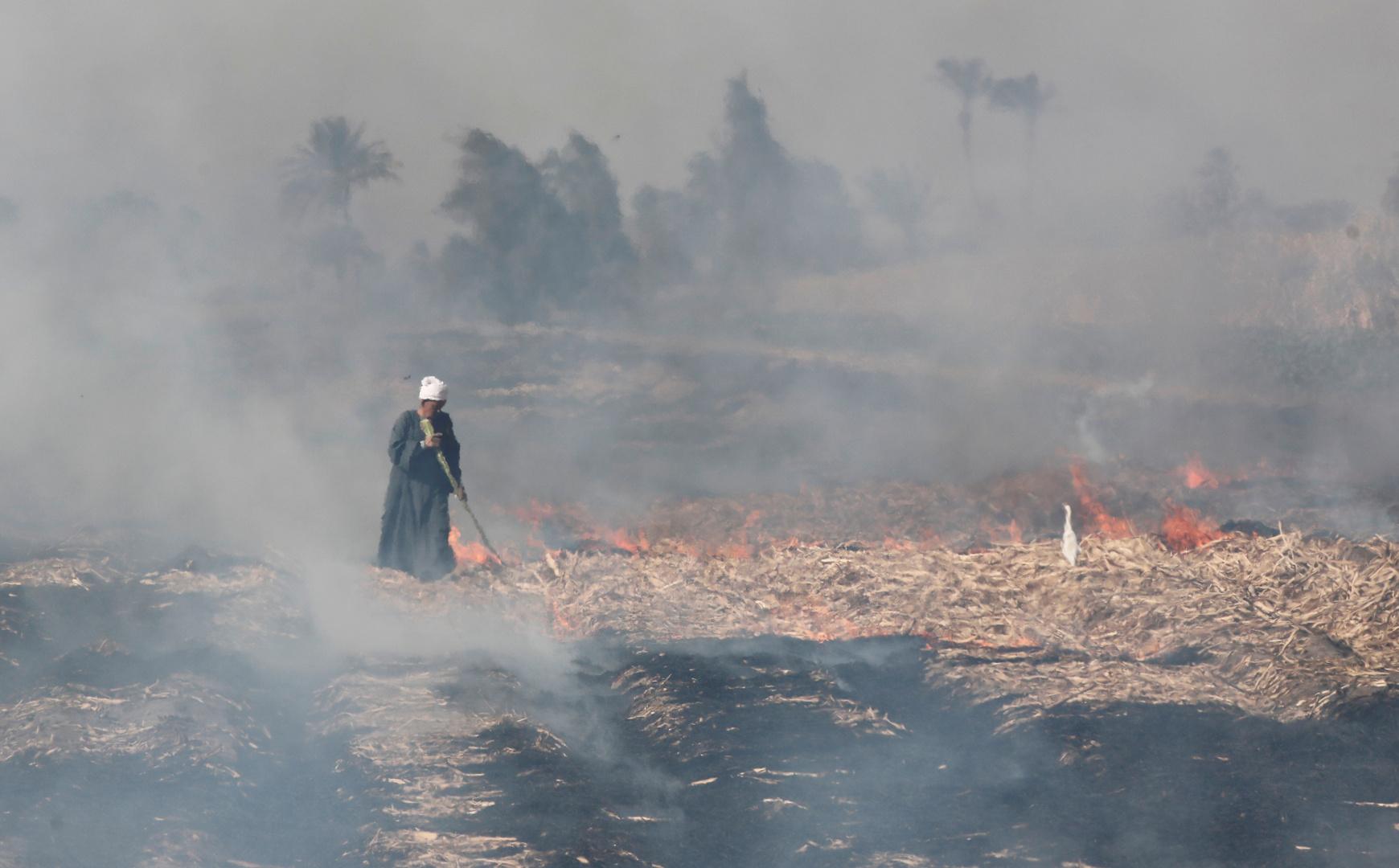 مصر.. حريق مروع في الأقصر يؤدي إلى احتراق 11 منزلا