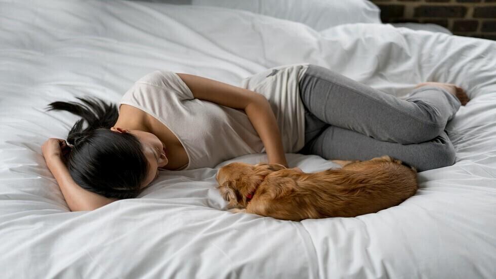 خمسة أسباب مثيرة للاهتمام تجعلك تتشارك سريرك مع كلبك