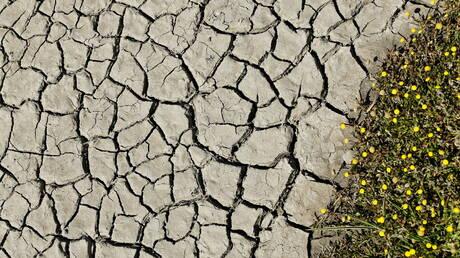 كاليفورنيا قد توسع نطاق حالة طوارئ الجفاف المفروضة مؤخرا