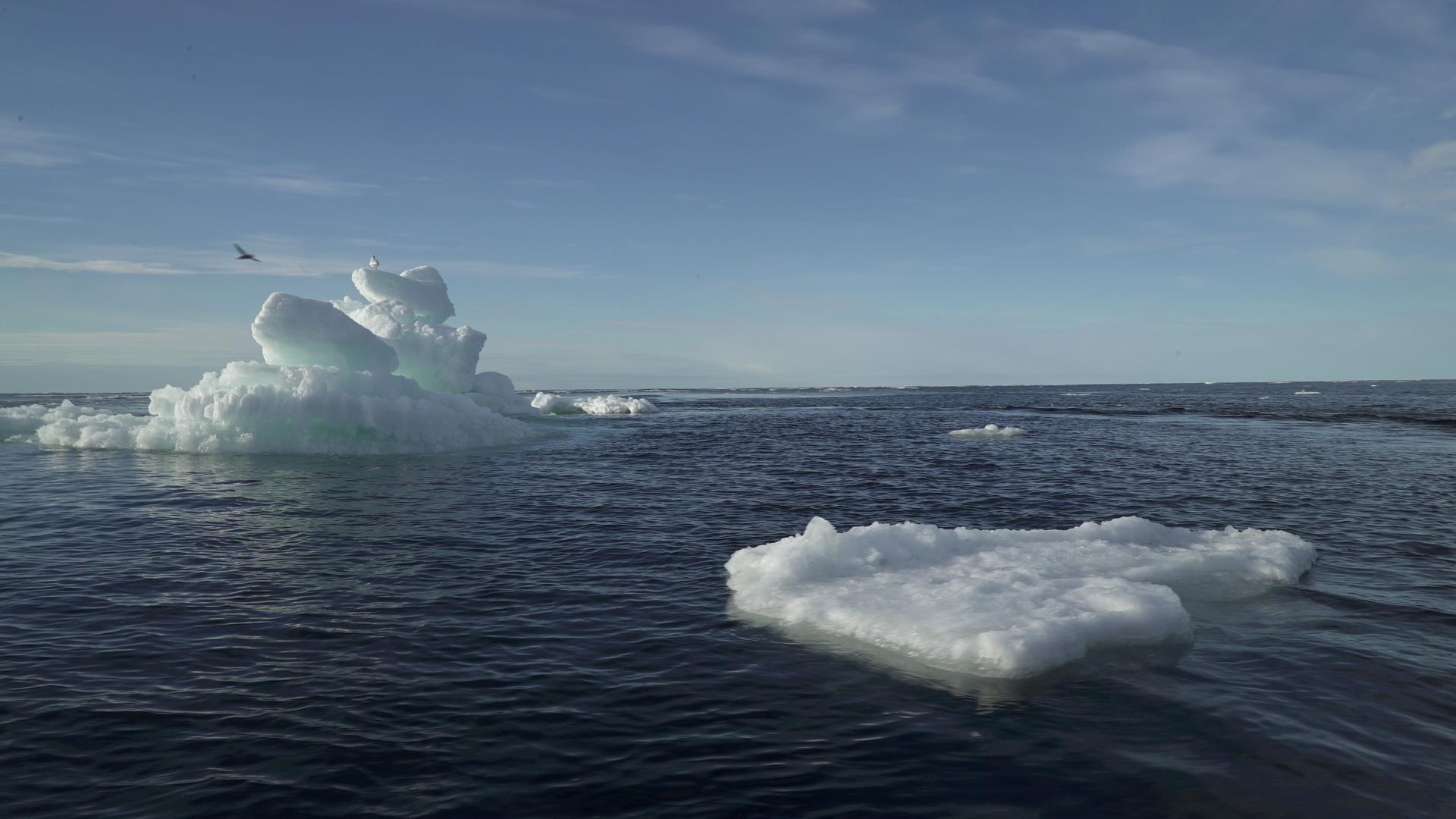 دراسة: الجليد في القطب الشمالي يذوب أسرع بمرتين