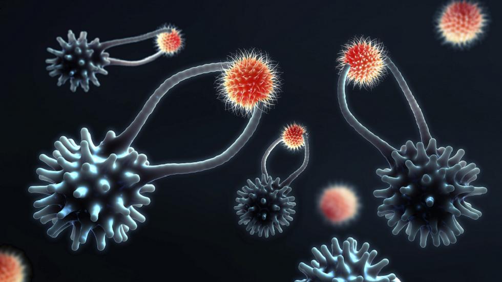الكشف عمّا يمكن أن يؤثر على مدى جودة عمل جهاز المناعة لدينا .. بما في ذلك اللقاحات!