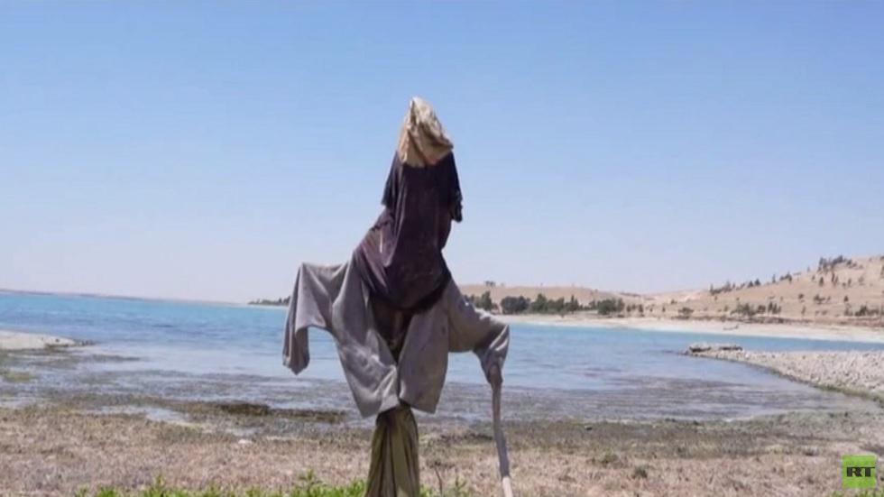 انخفاض ملحوظ في مستوى نهر الفرات بسوريا