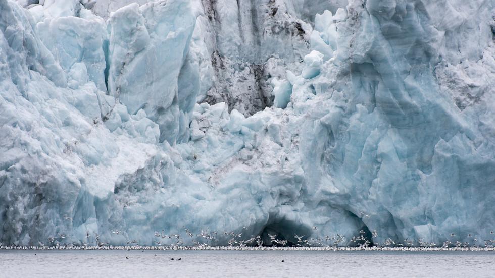 قائد أكبر بعثة استكشافية في القطب الشمالي يحذر من