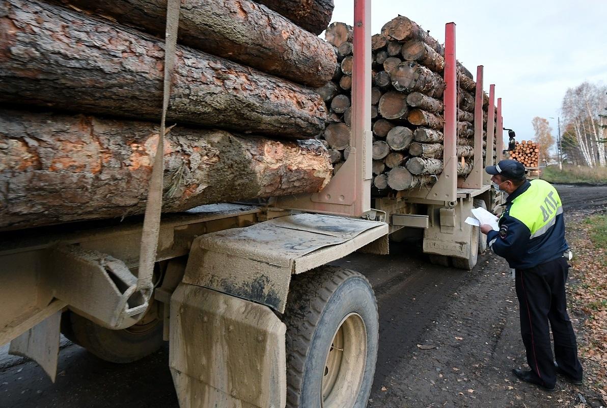 نقل شحنة من الخشب غير المعالج في سيبيريا