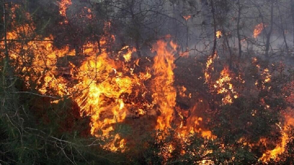 تونس.. تسجيل 122 حريقا خلال 24 ساعة