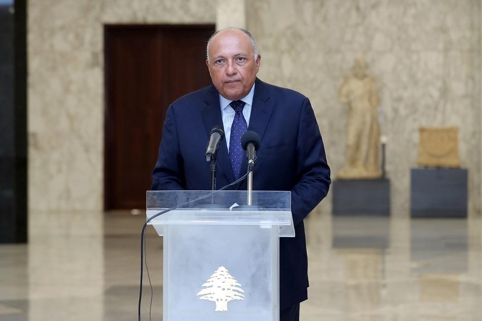وزير الخارجية المصري: إنهاء التدخلات الخارجية في سوريا شرط لإحلال السلام