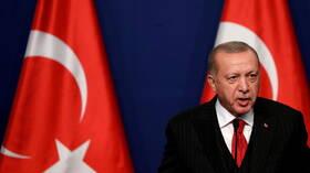 أردوغان: تركيا تجمعها علاقات قوية مع مصر