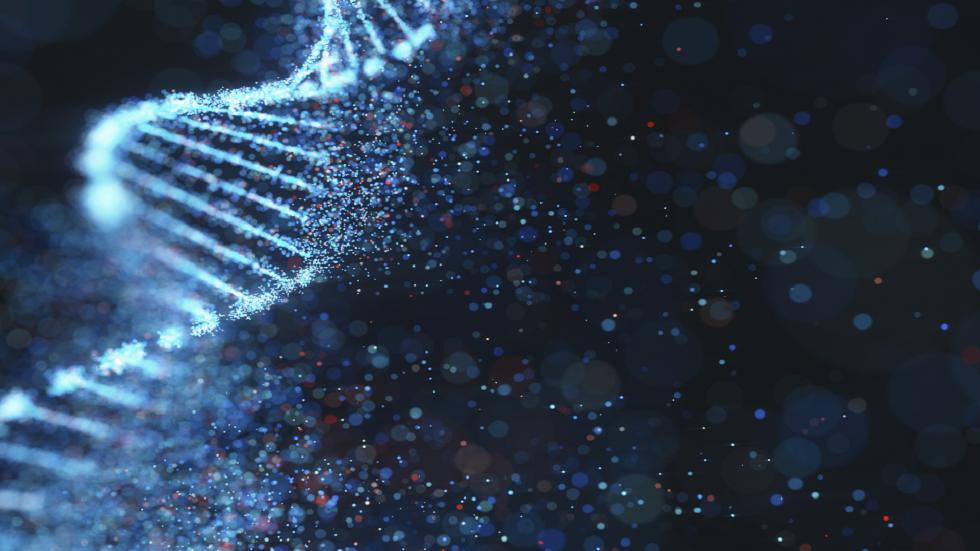 اكتشاف 16 متغيرا وراثيا مرتبطا بالسمنة!