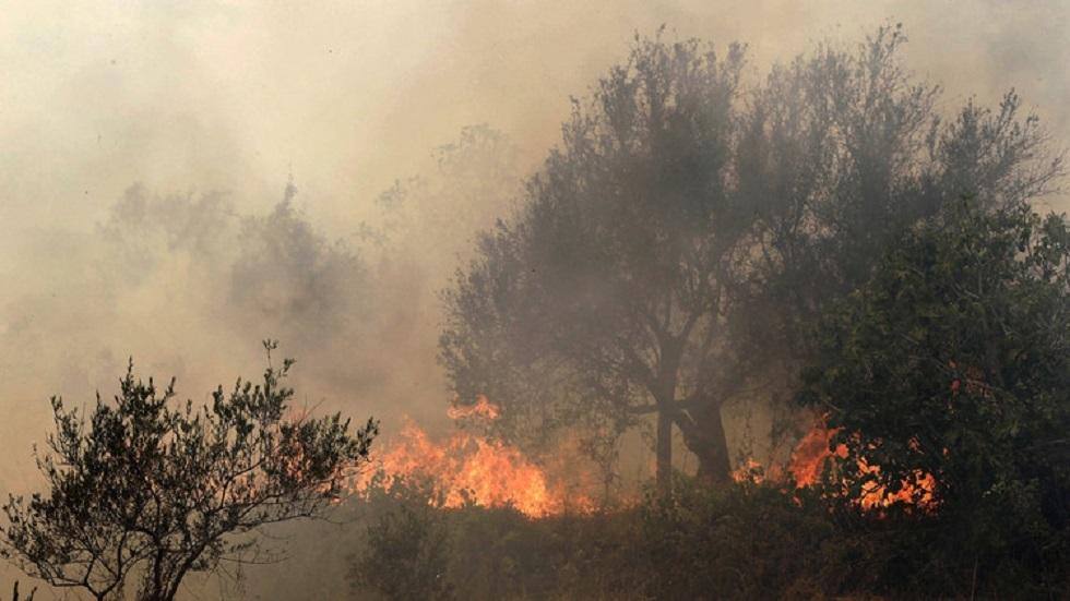 سوريا.. إخماد حرائق في الأراضي الزراعية بمحافظة اللاذقية