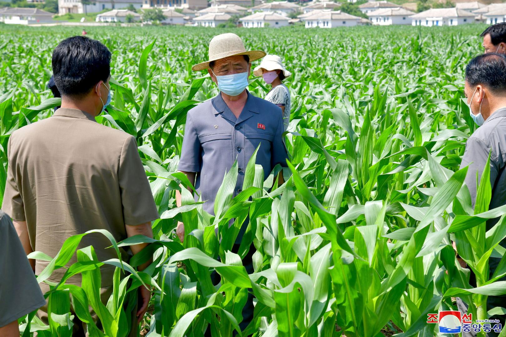 صحيفة كورية شمالية تدعو لاستمرار جهود الاعتماد على الذات حتى في حالة تحسن الأوضاع الاقتصادية