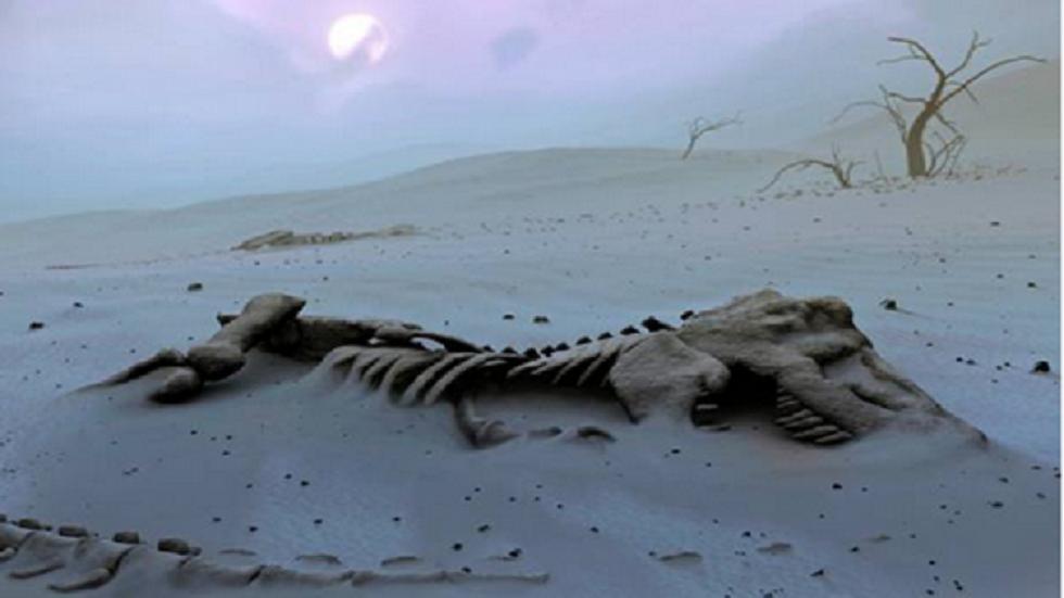 طفلة تعثر على آثار أقدام ديناصور وصفت بأنها