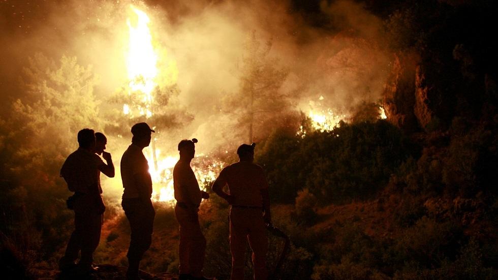 أردوغان: سنحشد كافة طاقات الدولة للسيطرة على حرائق الغابات وإخمادها