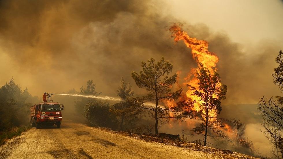 حرائق الغابات في تركيا