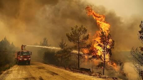 مصر تعزّي تركيا في ضحايا حرائق الغابات