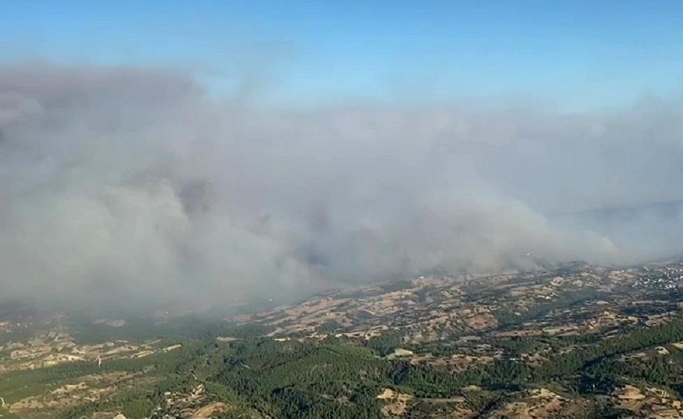 تركيا تكشف توزع الغابات المشتعلة