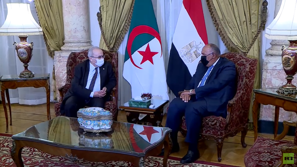 وزيرا خارجية مصر و الجزائر يبحثان قضايا إقليمية ودولية تتصدرها أزمة سد النهضة