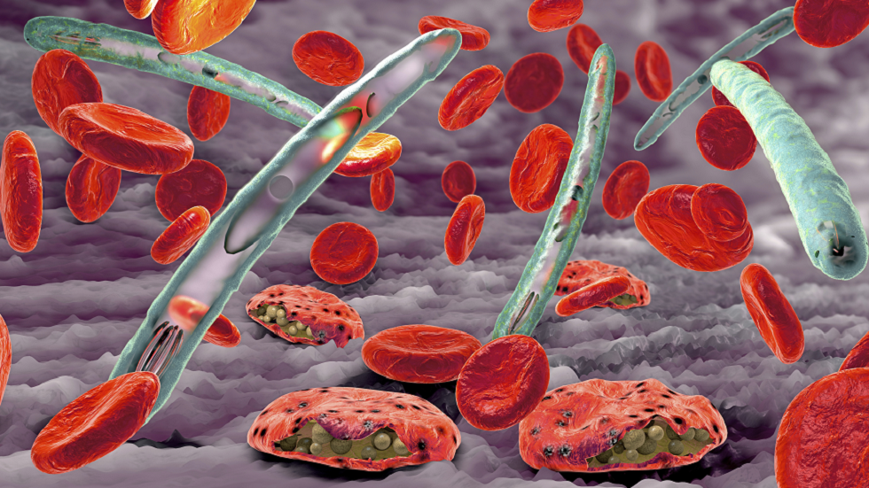 تطوّر هام يقرّبنا خطوة من القضاء على الملاريا في جميع أنحاء العالم!