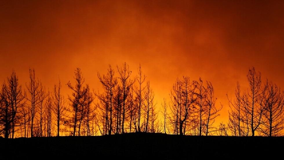 تركيا.. المسيرات تساهم في مكافحة حرائق الغابات على نطاق واسع