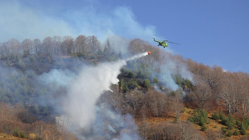حرائق الغابات في بلغاريا - أرشيف