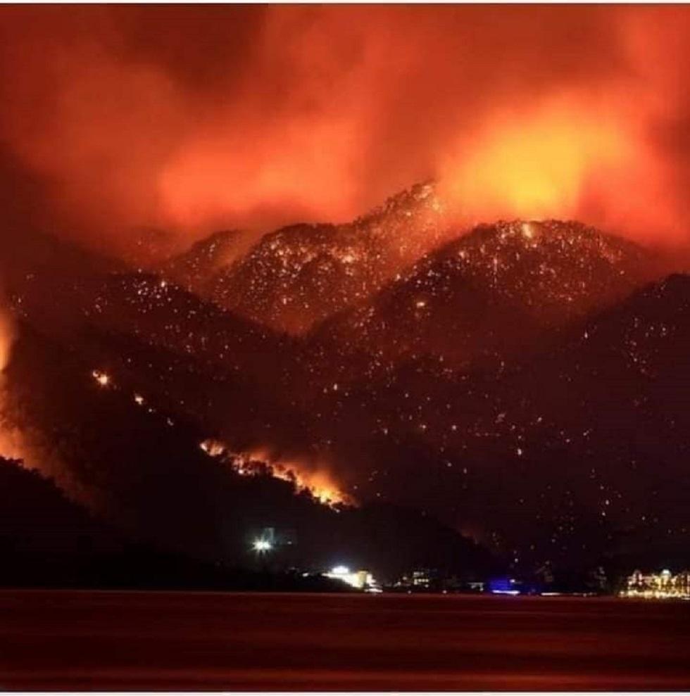 مسؤول جزائري: الحرائق شيطانية ومفتعلة وتم استغلال ارتفاع درجات الحرارة للتمويه (فيديو)