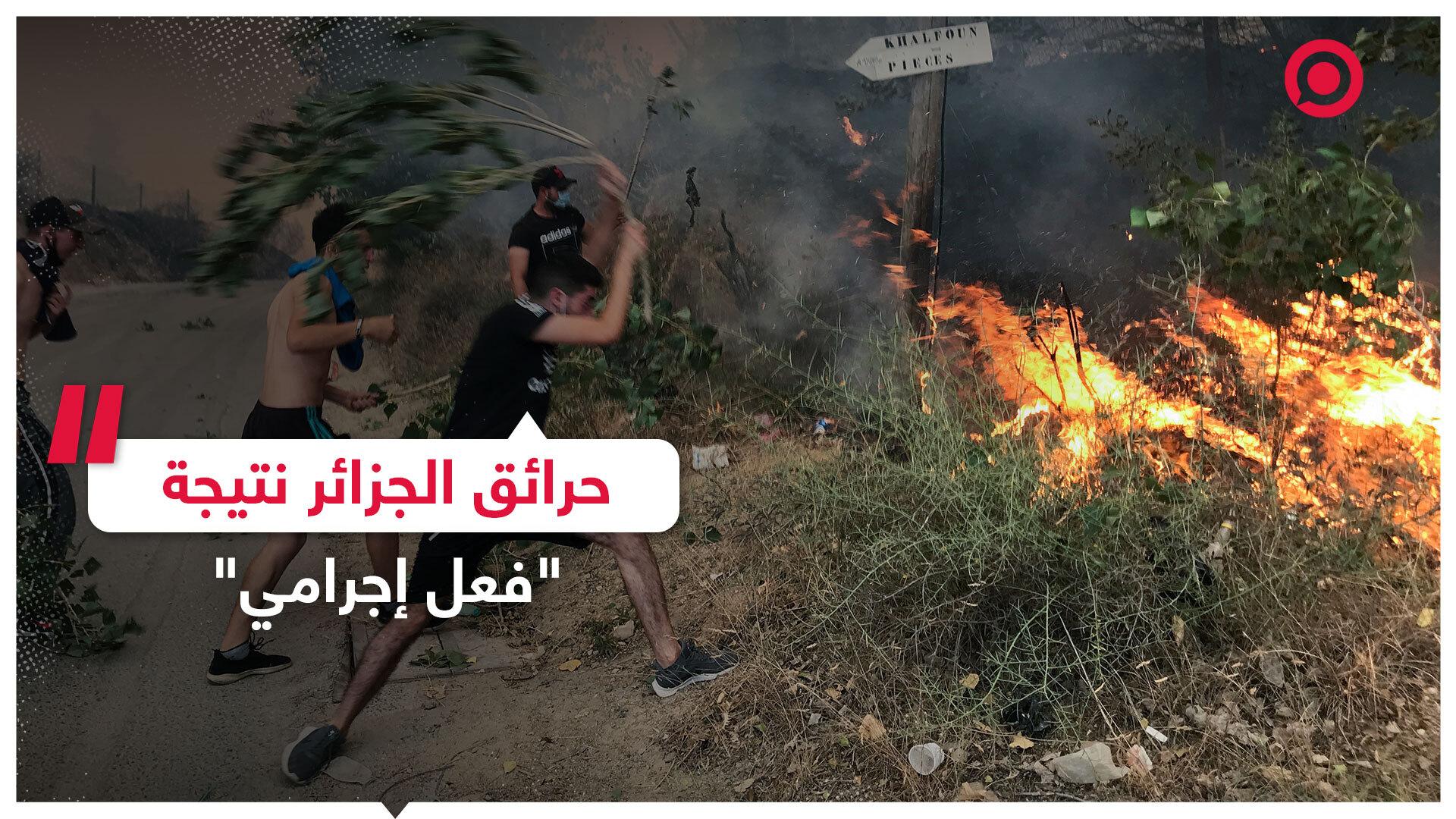 رئيس وزراء الجزائر: الحرائق نتيجة فعل إجرامي والدولة لن تتسامح