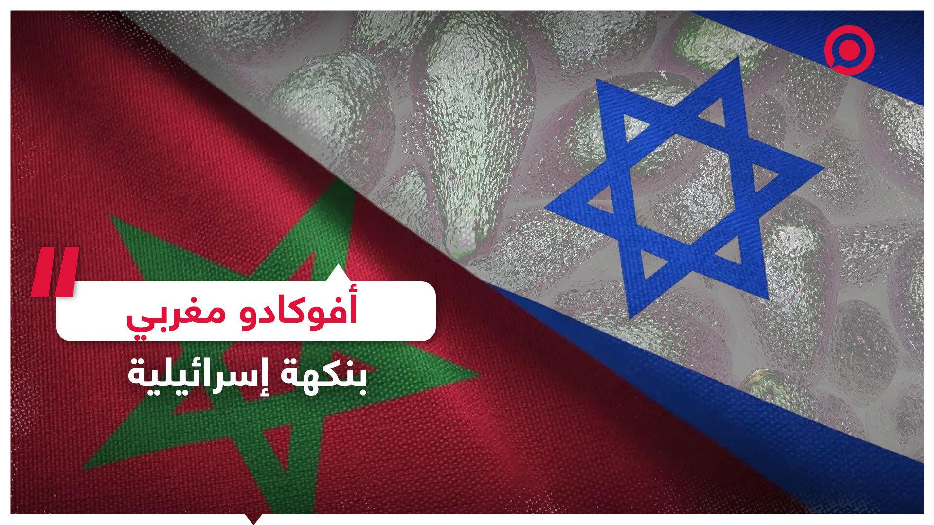 أفوكادو مغربي بنكهة إسرائيلية