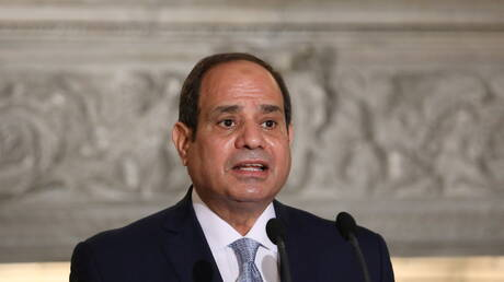 برلمانية مصرية تحذر من محاولة اجتزاء تصريحات السيسي عن رفع سعر رغيف الخبز