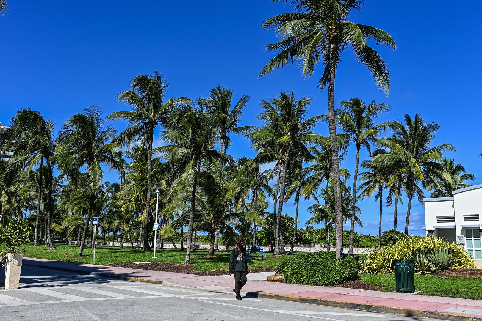 مدينة ميامي الأمريكية بولاية فلوريدا (صورة من الأرشيف)