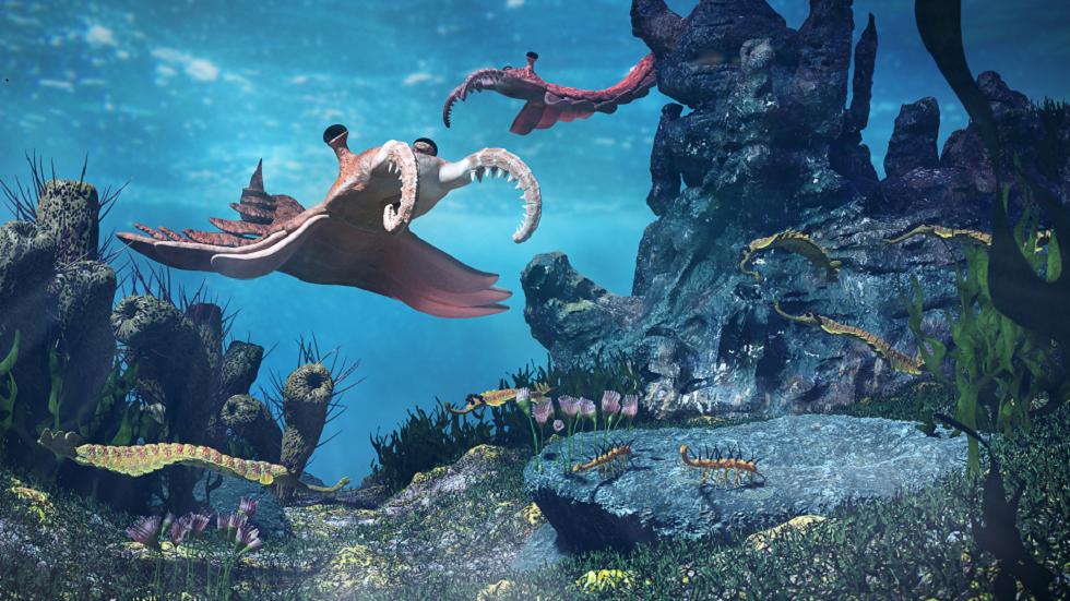 اكتشاف أنواع حيوانية ضخمة جديدة في صخور عمرها 500 مليون عام!