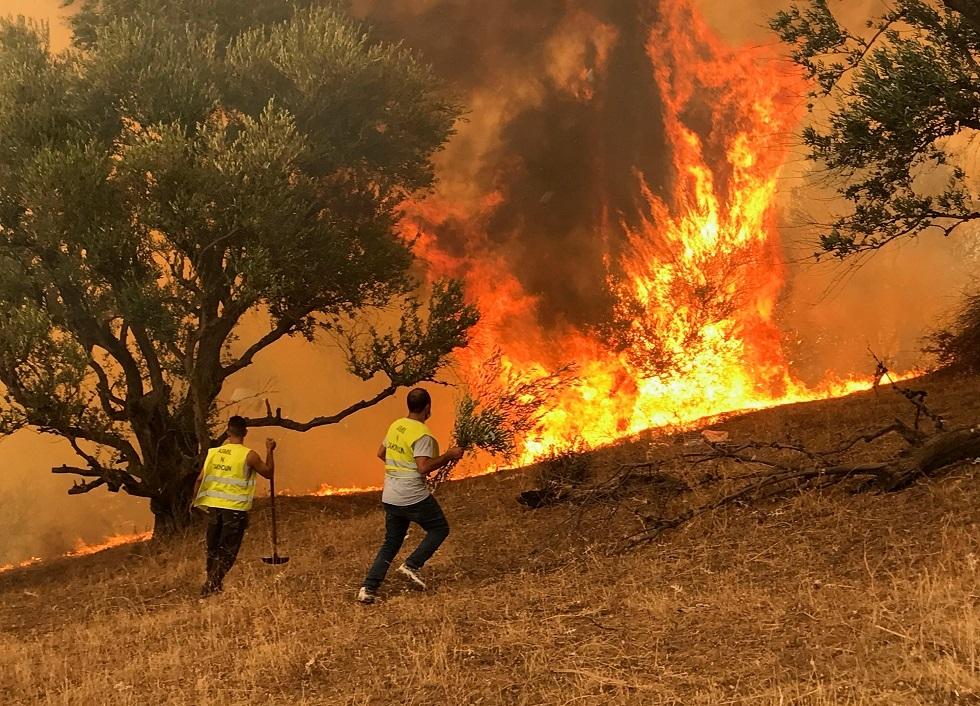 الجزائر.. السجن المؤقت لعشرات المشتبه بأنهم افتعلوا الحرائق