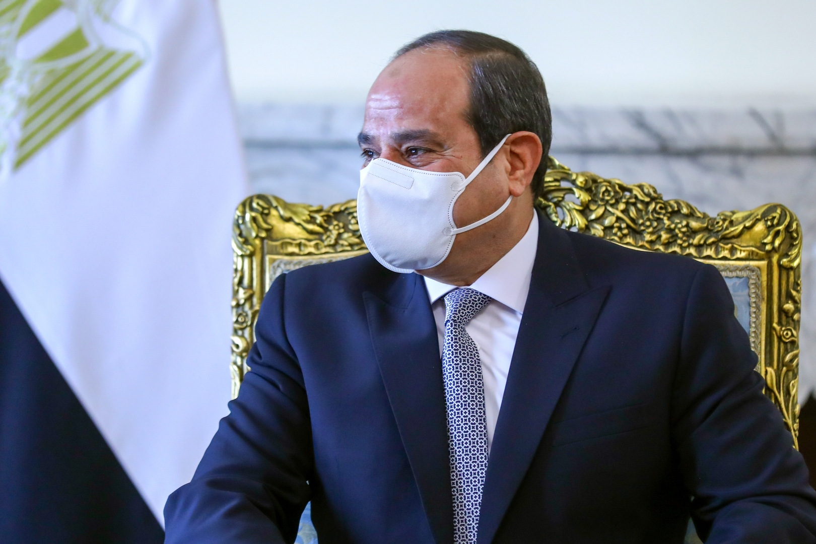السيسي يحصي عدد السكان غير المصريين في مصر