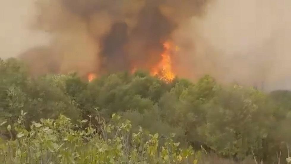 الجزائر.. اندلاع عدة حرائق في بومرداس