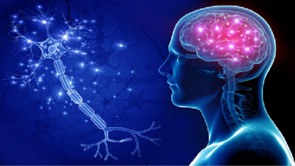 علماء الأحياء يكشفون كيفية تجنب مرض الزهايمر