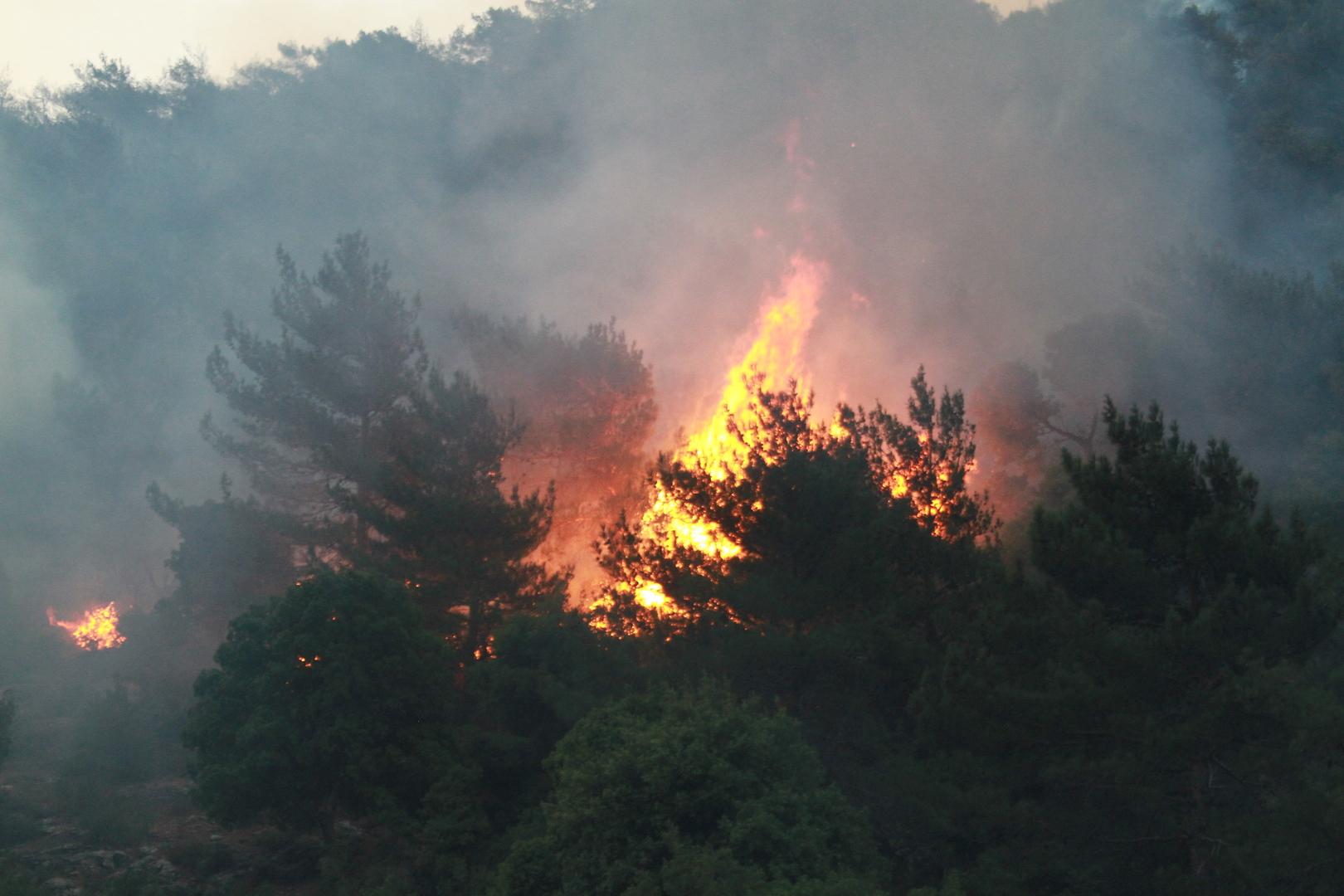 لبنان.. اندلاع حريقين بموقعين مختلفين في عكار شمال البلاد (فيديو)