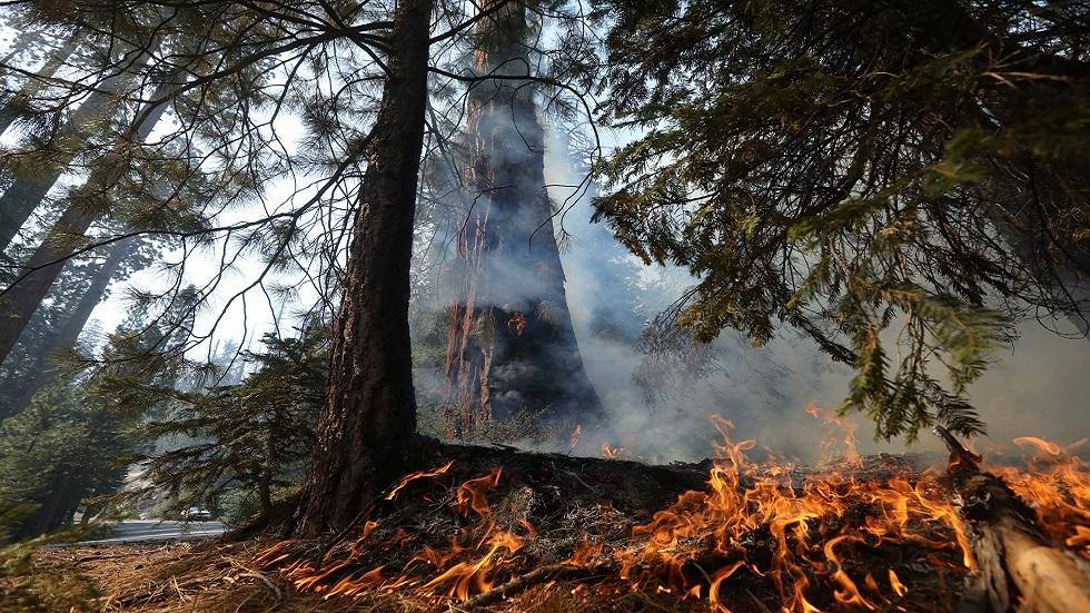 الولايات المتحدة.. إحراز تقدم في احتواء حريق غابات بكاليفورنيا أدى لنزوح الآلاف