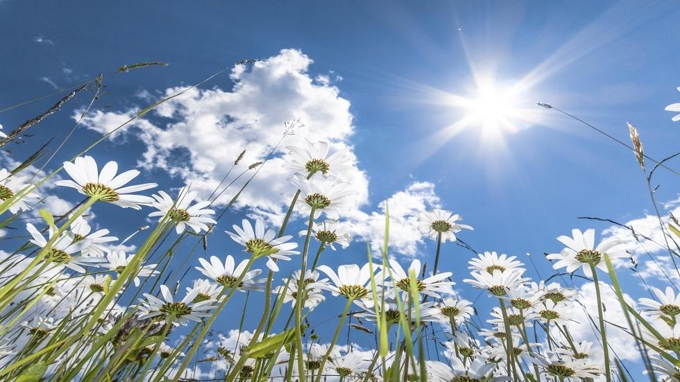 العلماء يعيدون النظر في تعليمات حول الشمس وفيتامين D